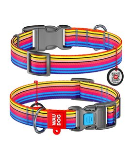 Dog Collar WAUDOG Nylon with pattern - Rainbow