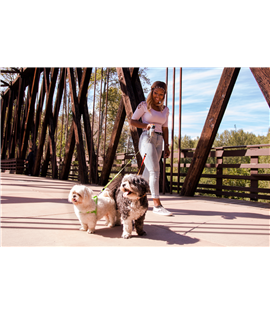 Dual Doggie Retractable Leash Gray